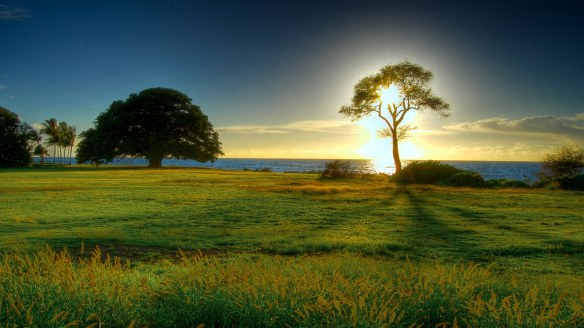 Beautiful-Nature-Wallpapers-for-Background-HD-Wallpaper